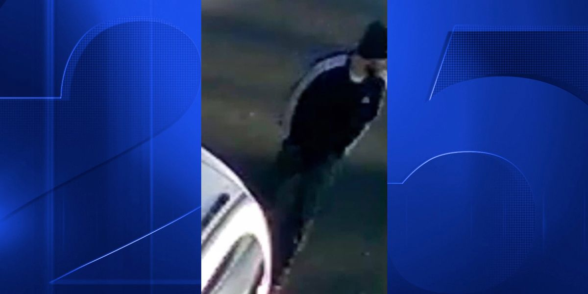 Webster Police looking for man who kicked in couple's door, stole large sum of cash they had saved for dream wedding
