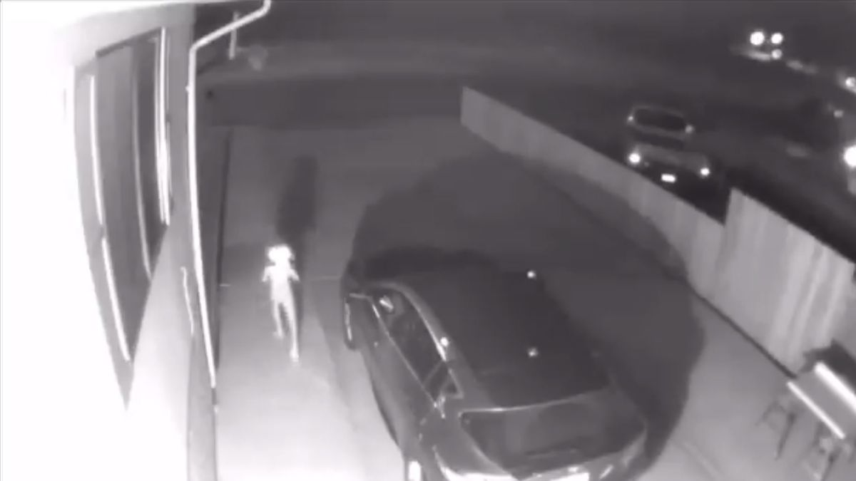'What the heck?' Creepy creature shows up on security cam, leaves homeowner dumbfounded