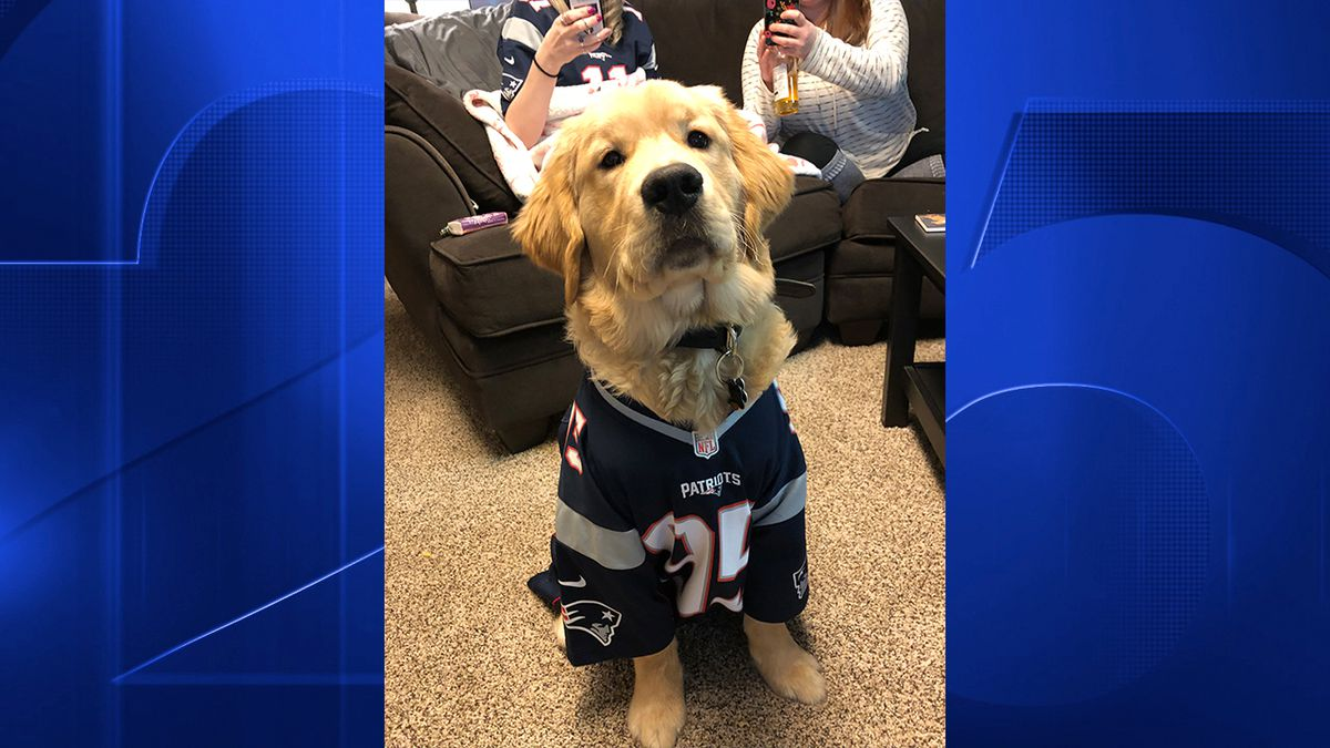 PHOTOS: Fans show support for Patriots as they take on Chiefs in AFC Championship
