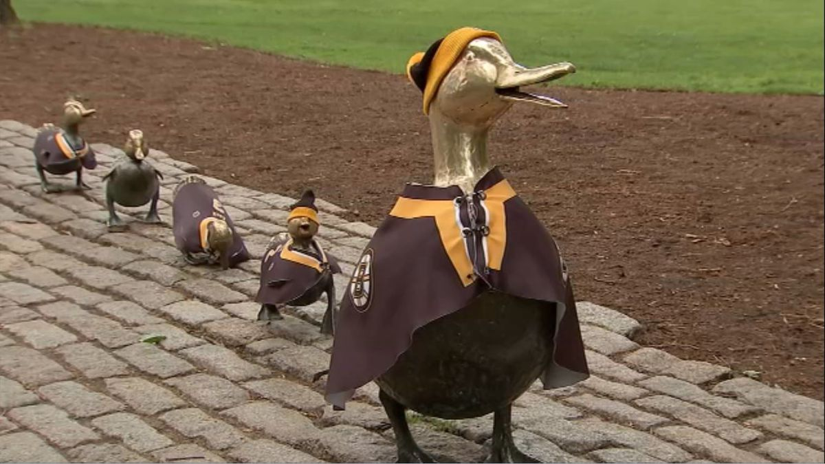 """New """"Make Way for Ducklings"""" book could be in the works"""