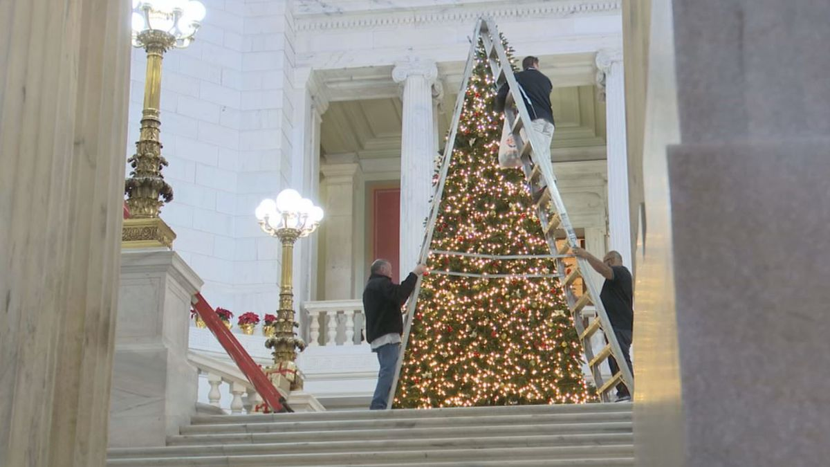 Rhode Island buys artificial Christmas tree for capitol building