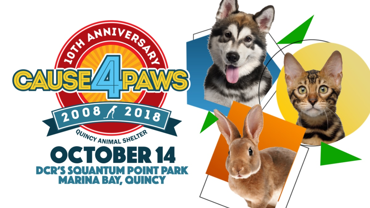 Cause 4 Paws Road Race