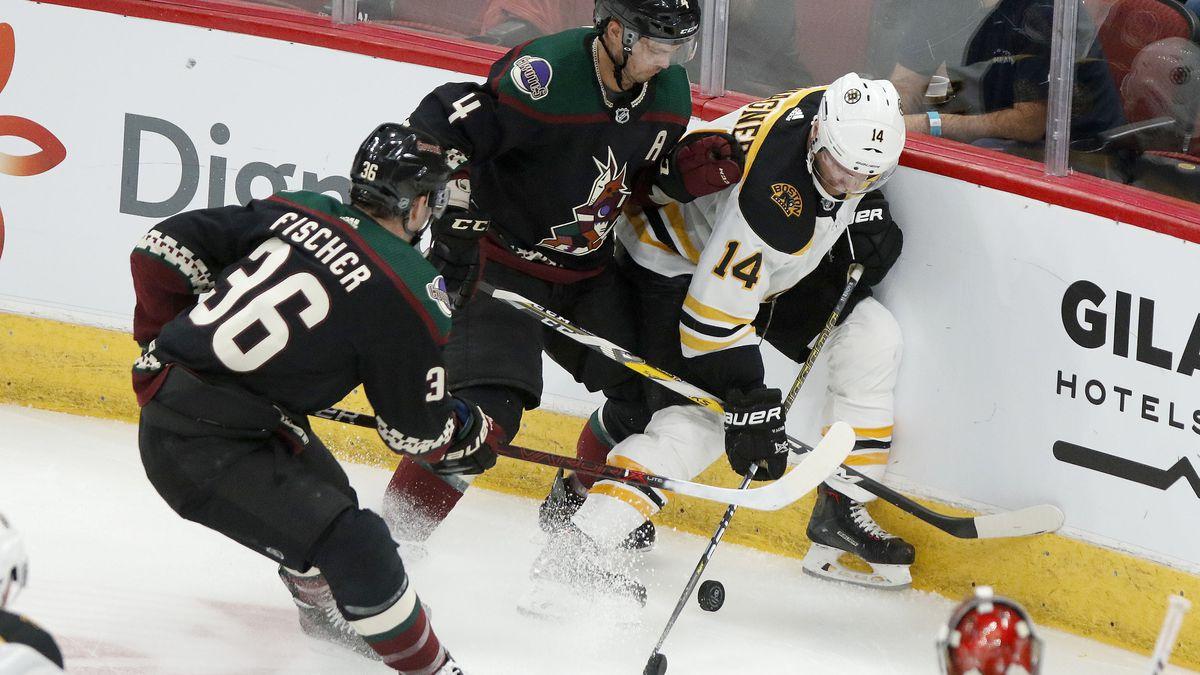 Halak stops 35 shots in Bruins' 1-0 win over Coyotes