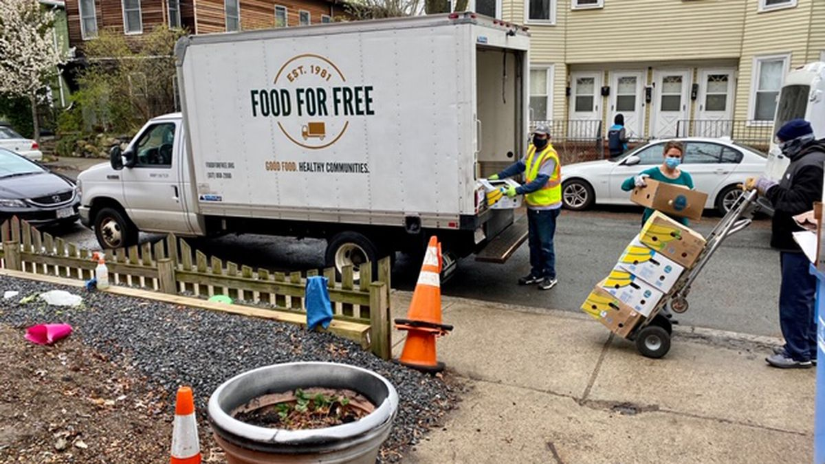 Cambridge's Food for Free provides a lesson on pivoting