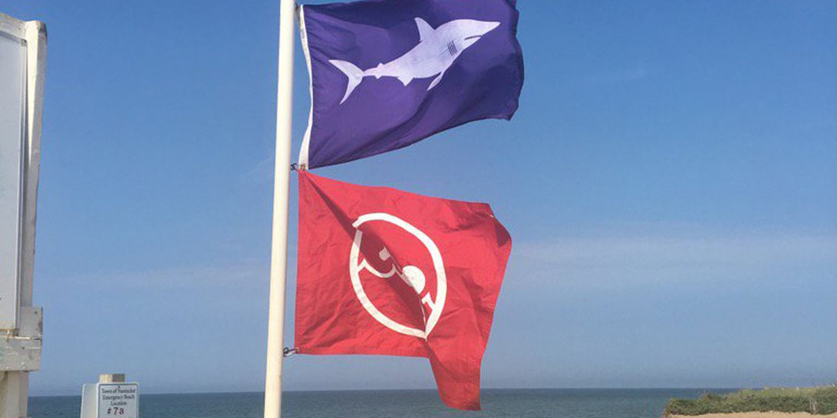 Multiple Cape Cod & Nantucket beaches closed after confirmed shark sightings