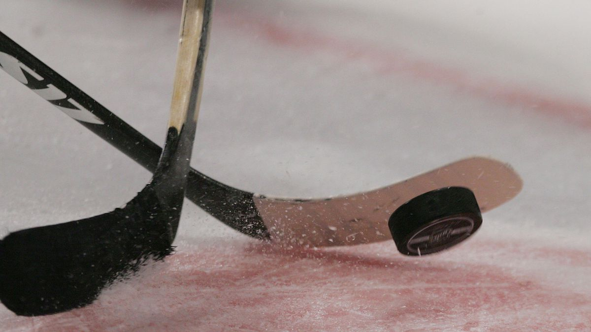 NHL plans to test players for COVID-19 daily if games resume