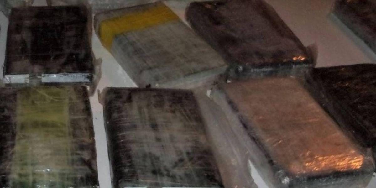 Florida deputies recover 15 kilos of cocaine that washed up on beach in Palm Coast